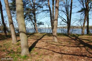 Piney Shore Road, Crumpton, MD 21628 (#QA9618623) :: Pearson Smith Realty