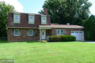 1505 Queen Anne Drive, Chester, MD 21619 (#QA9733435) :: Pearson Smith Realty