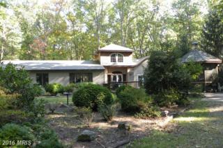 1511 Mcginnes Road, Chestertown, MD 21620 (#QA9783654) :: Pearson Smith Realty
