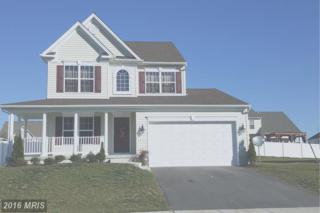 138-E. Brook Drive, Centreville, MD 21617 (#QA9784604) :: Pearson Smith Realty