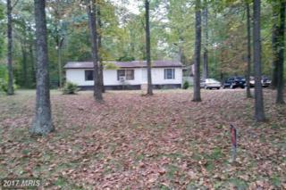 1500 Blanco Road, Sudlersville, MD 21668 (#QA9805800) :: Pearson Smith Realty
