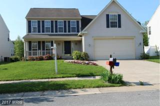 226 Creeks End Lane, Stevensville, MD 21666 (#QA9851244) :: Pearson Smith Realty