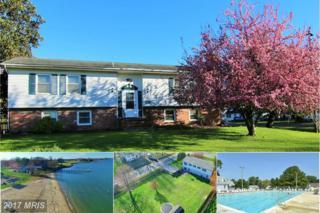 225 Nichols Manor Drive, Stevensville, MD 21666 (#QA9888039) :: Pearson Smith Realty