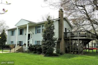 109 Queen Anne Road, Stevensville, MD 21666 (#QA9917194) :: Pearson Smith Realty