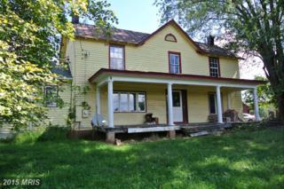 111 Dennis Road, Castleton, VA 22716 (#RP8504509) :: Pearson Smith Realty