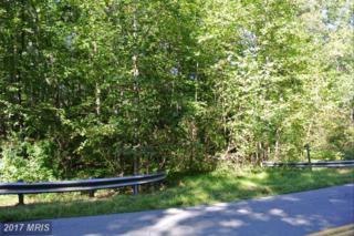 Weaver, Amissville, VA 20106 (#RP8766287) :: LoCoMusings