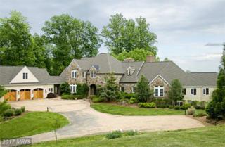 1679 North Poes Road, Flint Hill, VA 22627 (#RP9651290) :: LoCoMusings