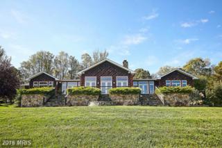 59 Riley Hollow Road, Huntly, VA 22640 (#RP9797714) :: Pearson Smith Realty