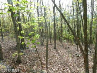 0 Supinlick Ridge Road, Mount Jackson, VA 22842 (#SH8070344) :: Pearson Smith Realty