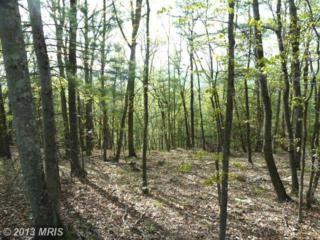 Supinlick Ridge Road, Mount Jackson, VA 22842 (#SH8070406) :: Pearson Smith Realty