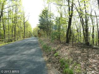 0 Supinlick Ridge Road, Mount Jackson, VA 22842 (#SH8070476) :: Pearson Smith Realty