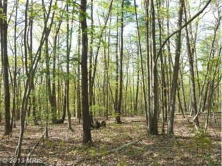 0 Supinlick Ridge Road, Mount Jackson, VA 22842 (#SH8070535) :: Pearson Smith Realty