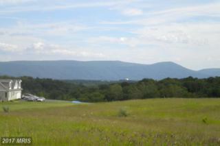 Bergen Drive Lot # 12, Maurertown, VA 22644 (#SH8685350) :: Pearson Smith Realty