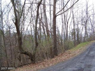 0 Pheasant Drive, Basye, VA 22810 (#SH9590912) :: LoCoMusings