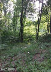 0 Roundhill, Mount Jackson, VA 22842 (#SH9601901) :: LoCoMusings