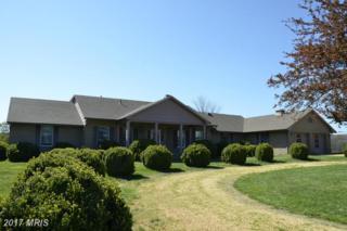 2043 Pleasant View Road, Mount Jackson, VA 22842 (#SH9635626) :: Pearson Smith Realty