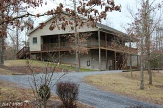 114 Bluebird Court, Basye, VA 22810 (#SH9718167) :: LoCoMusings