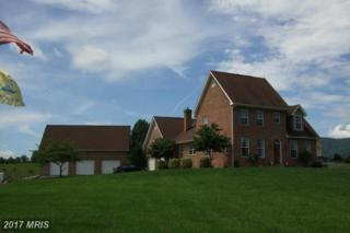 517 Brooks Lane, Strasburg, VA 22657 (#SH9737608) :: LoCoMusings