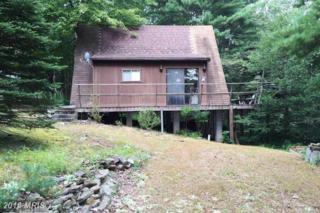 393 Maple Road S, Mount Jackson, VA 22842 (#SH9749079) :: Pearson Smith Realty
