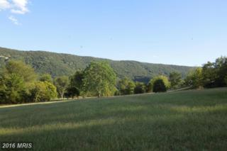 Not On File, Toms Brook, VA 22660 (#SH9768393) :: Pearson Smith Realty