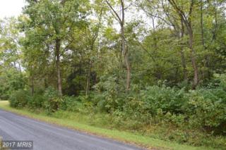 Deer Rapids Road, Strasburg, VA 22657 (#SH9787416) :: LoCoMusings