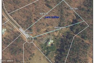 Redtail Court, Basye, VA 22810 (#SH9788903) :: Pearson Smith Realty