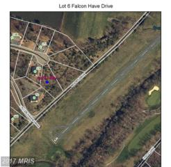 Falcon Haven Drive, Basye, VA 22810 (#SH9790543) :: Pearson Smith Realty