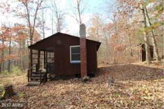 Mine Mountain, Fort Valley, VA 22652 (#SH9808713) :: LoCoMusings