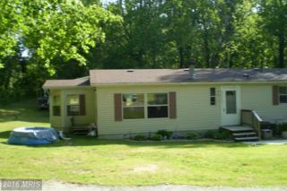 22844 Our Ladys Lane, Lexington Park, MD 20653 (#SM9596463) :: Pearson Smith Realty