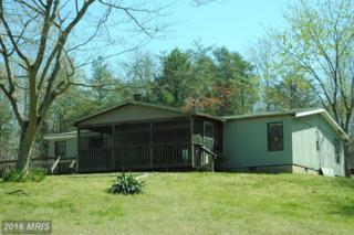 25890 Holly Point Road, Hollywood, MD 20636 (#SM9619089) :: Pearson Smith Realty