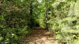 20265 Hawks Way, Leonardtown, MD 20650 (#SM9638380) :: LoCoMusings