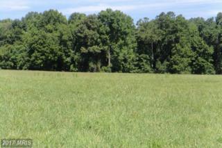 26202 Eagle Lane, Mechanicsville, MD 20659 (#SM9703090) :: LoCoMusings