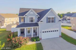 22410 Doug Way, Great Mills, MD 20634 (#SM9756336) :: Pearson Smith Realty
