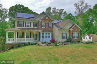 39784 Claires Drive, Mechanicsville, MD 20659 (#SM9919203) :: Pearson Smith Realty