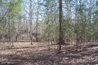 11401 Railroad Lane, Locust Grove, VA 22508 (#SP7281557) :: Pearson Smith Realty