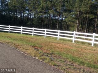 10001 Tarrington Way, Spotsylvania, VA 22551 (#SP8471839) :: LoCoMusings