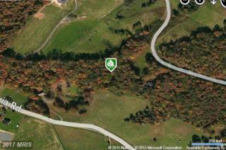 17220 Arrow Point Drive, Orange, VA 22960 (#SP8569579) :: LoCoMusings