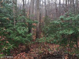 7326 Red Feather Lane, Spotsylvania, VA 22551 (#SP9525023) :: LoCoMusings