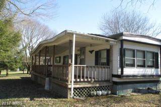 5005 Courthouse Road, Spotsylvania, VA 22551 (#SP9595405) :: Pearson Smith Realty