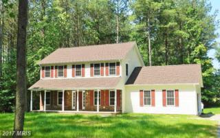 9030 Pine Acres Way, Spotsylvania, VA 22551 (#SP9615855) :: LoCoMusings