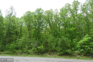 17138 Arrow Point Drive, Orange, VA 22960 (#SP9655112) :: LoCoMusings