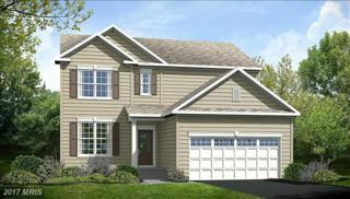 1 Hudgins Farm Circle, Fredericksburg, VA 22408 (#SP9669114) :: Pearson Smith Realty