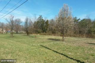 5715 Ross Drive, Fredericksburg, VA 22407 (#SP9706488) :: Pearson Smith Realty
