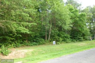 6111 Eds Road, Mineral, VA 23117 (#SP9707799) :: Pearson Smith Realty