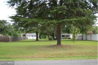 5705 Lucas Street, Fredericksburg, VA 22407 (#SP9730343) :: Pearson Smith Realty