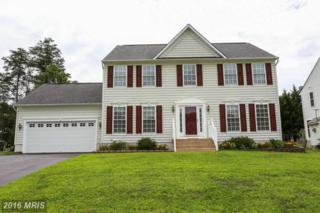 4122 Mossy Bank Lane, Fredericksburg, VA 22408 (#SP9733680) :: Pearson Smith Realty