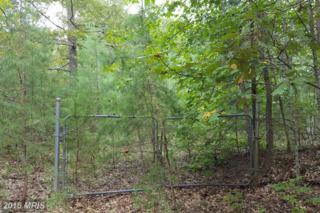 6640 Hook Court, Spotsylvania, VA 22551 (#SP9772248) :: Pearson Smith Realty
