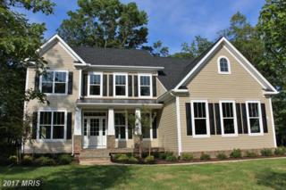 1 Vintage Lane, Spotsylvania, VA 22553 (#SP9780404) :: Pearson Smith Realty