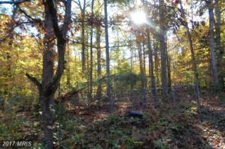 14511 Antler Road, Fredericksburg, VA 22407 (#SP9808810) :: LoCoMusings