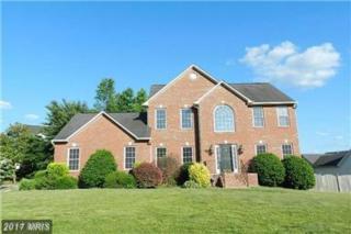 6910 Governors Grant Lane, Fredericksburg, VA 22407 (#SP9816896) :: Pearson Smith Realty